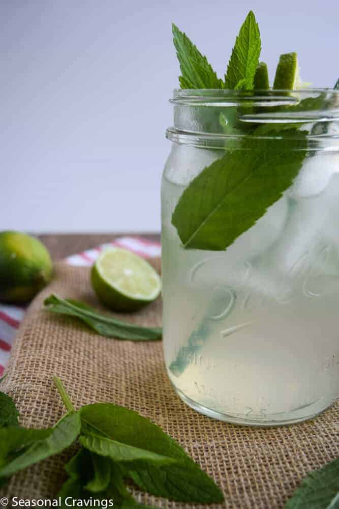 Mint Limeade Mojito in a glass with fresh mint