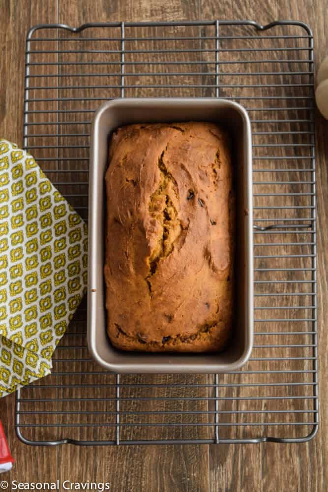 Gluten Free Pumpkin Bread in a loaf pan