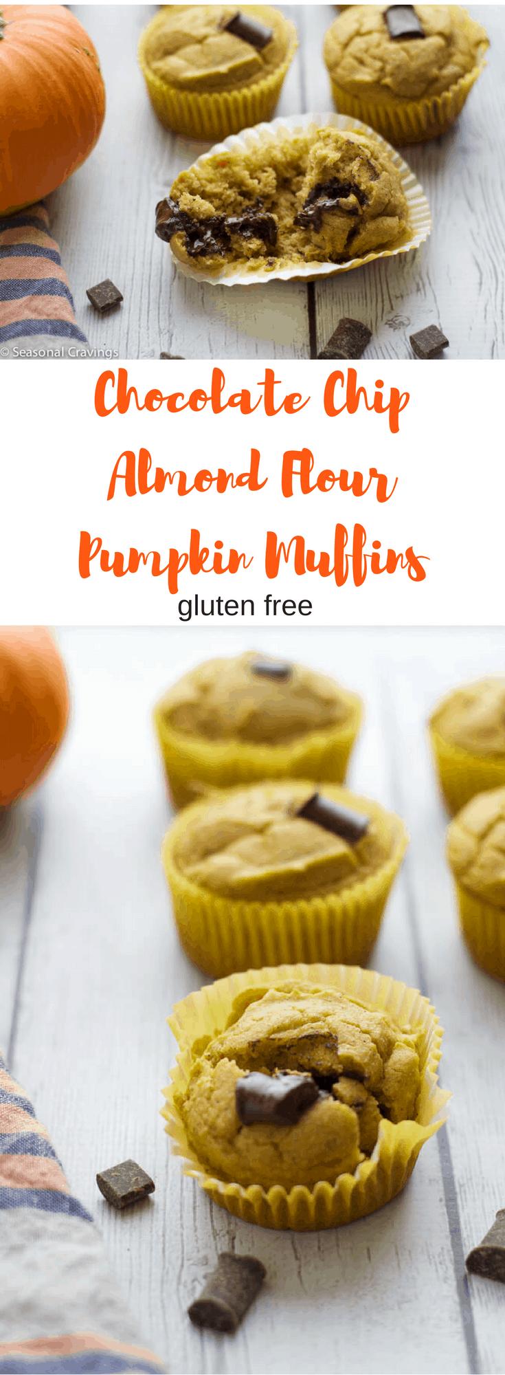 Chocolate Chip Almond Flour Pumpkin Muffins