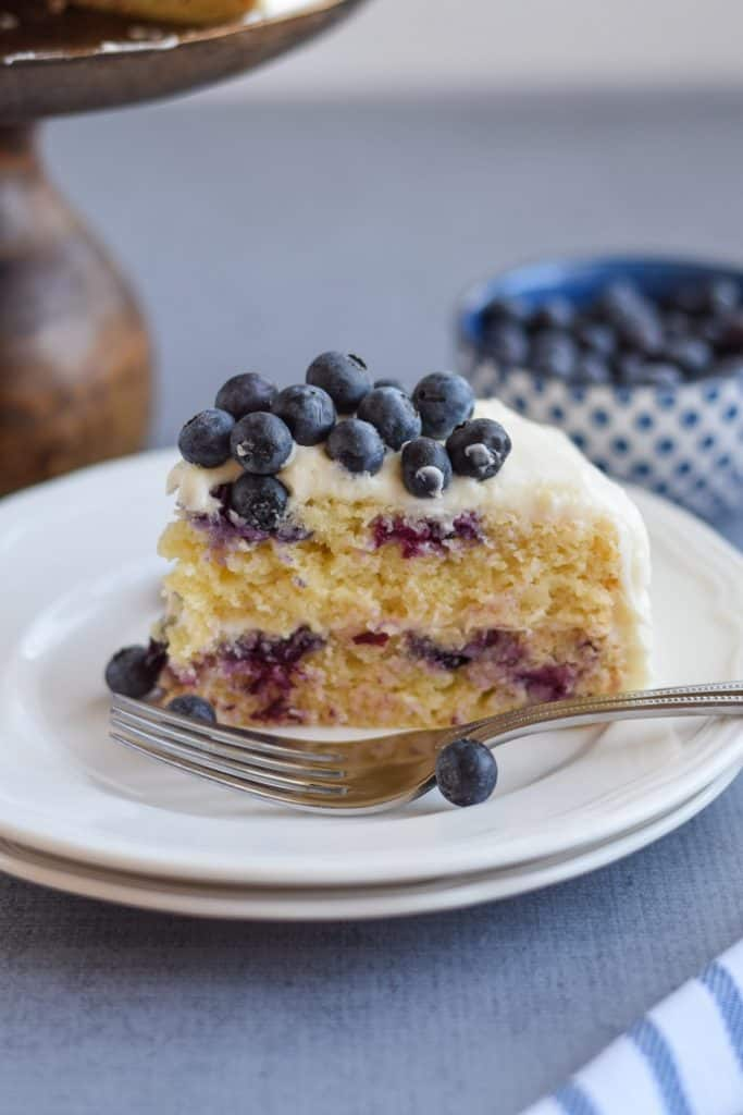 Gluten Free Blueberry Cake close up