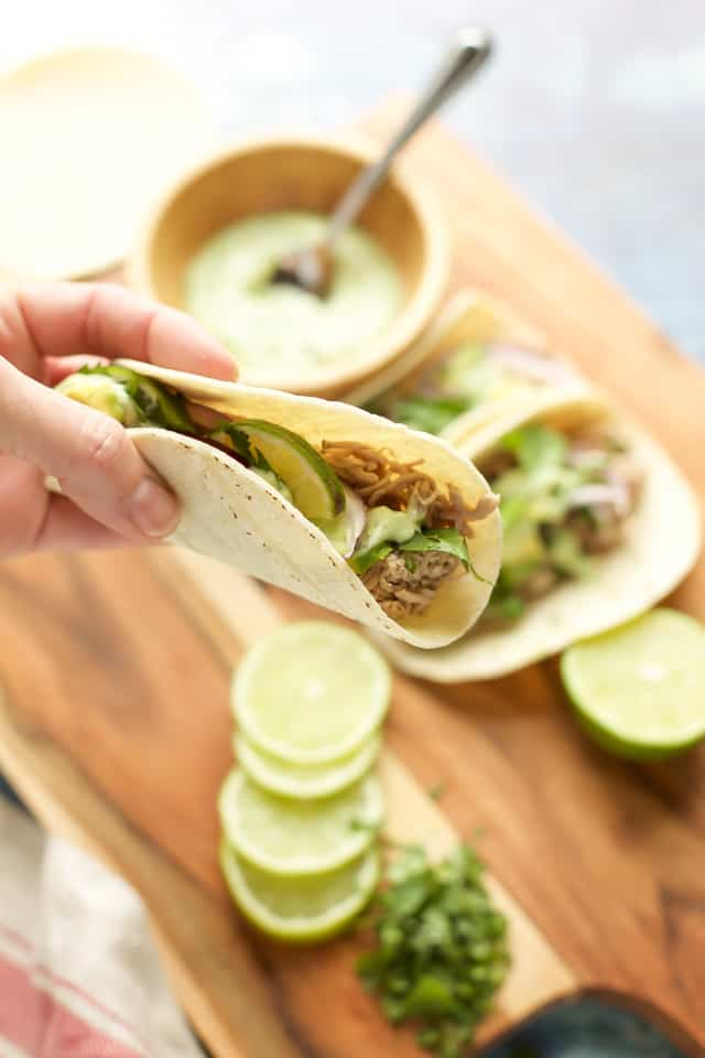 instant pot pork tacos up close